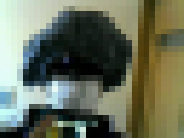 f:id:hana3hana:20160620183414j:plain