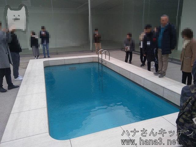 レアンドロの「スイミング・プール」