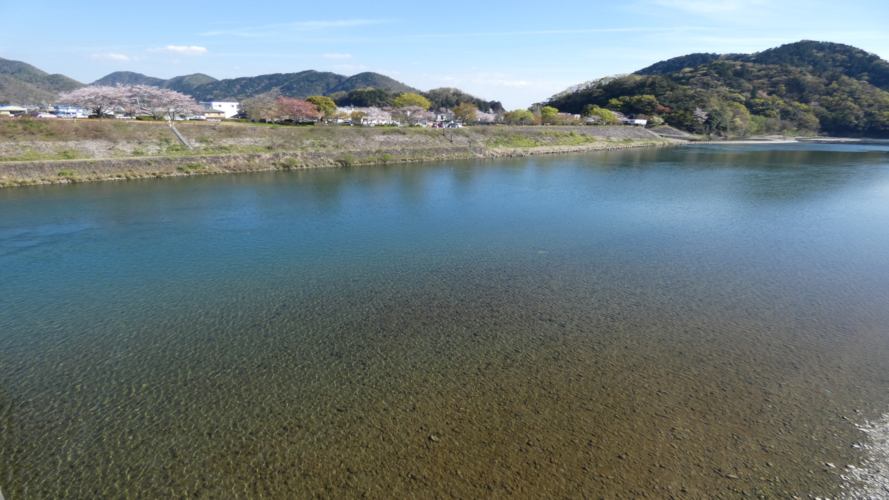 長良川 春