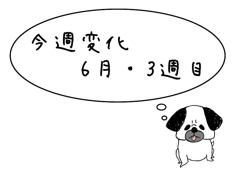 f:id:hana_87_blog:20200622114126p:plain