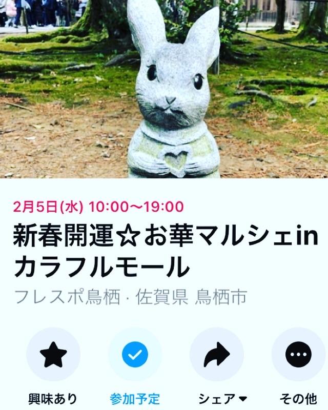 f:id:hana_su-hi:20200129100736j:image