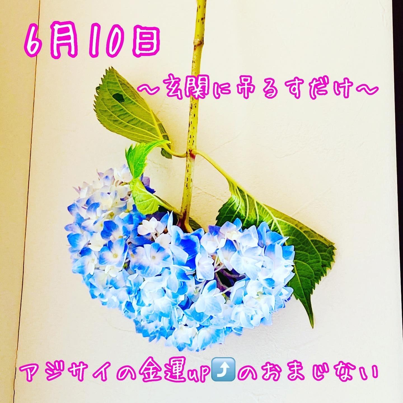 f:id:hana_su-hi:20200610165847j:image