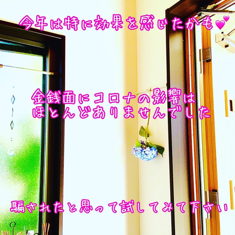 f:id:hana_su-hi:20200610165851j:image