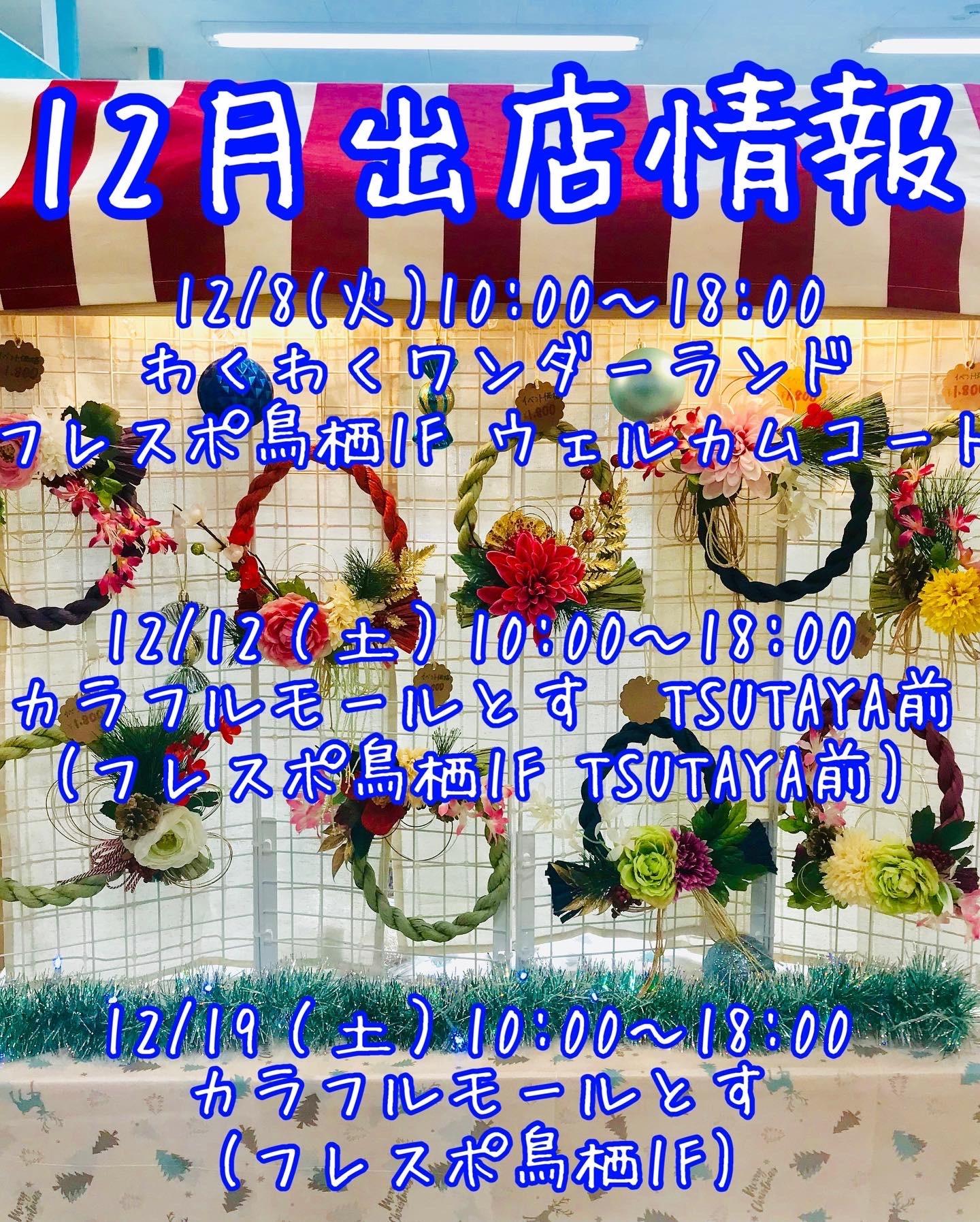 f:id:hana_su-hi:20201207181208j:image