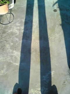 f:id:hanaaoi:20101129143927j:image