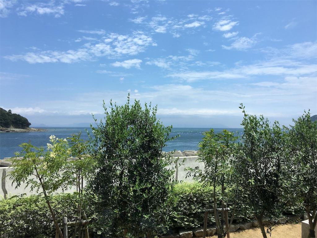 f:id:hanachan-to-kawaasobi:20170711225510j:image