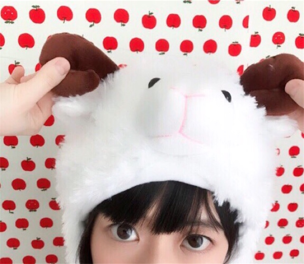 f:id:hanachan114:20180324020410j:image