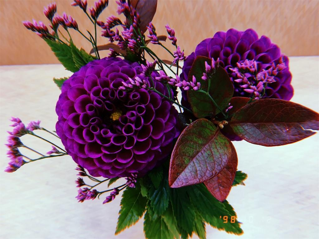 f:id:hanachan114:20181020231534j:image