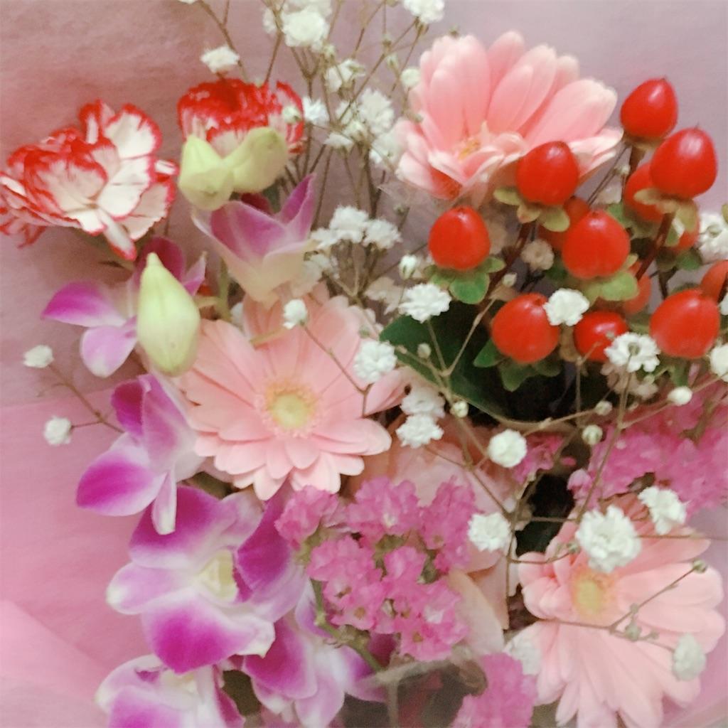 f:id:hanachan114:20190410180909j:image