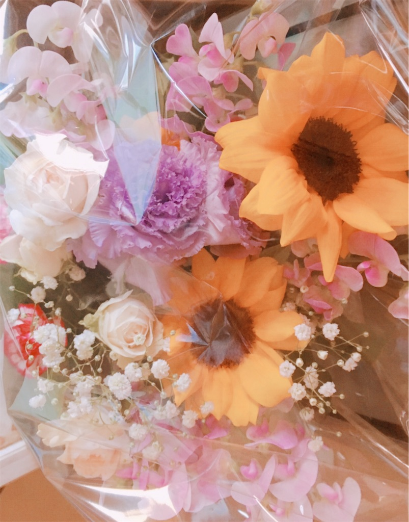 f:id:hanachan114:20190510223532j:image