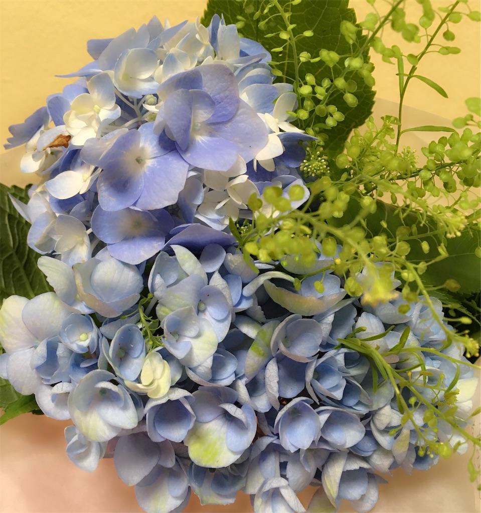 f:id:hanachan114:20200705185212j:image