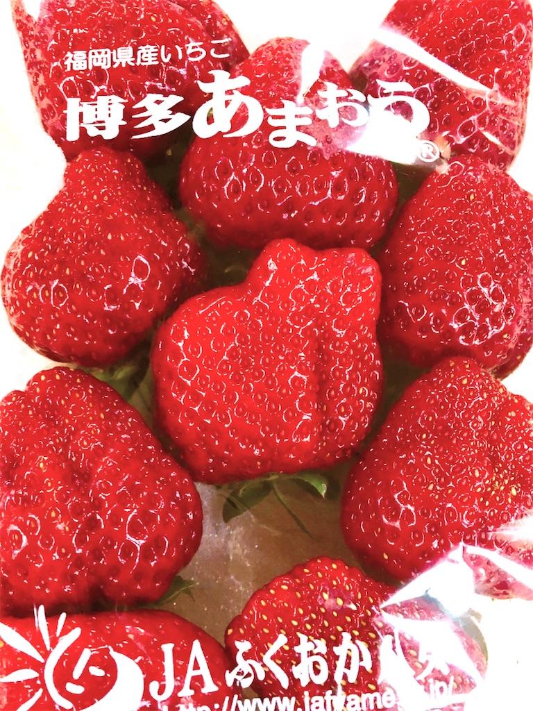 f:id:hanachan114:20210411191114j:image