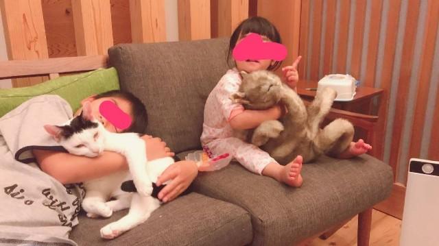 f:id:hanachan3939:20190512071044j:image