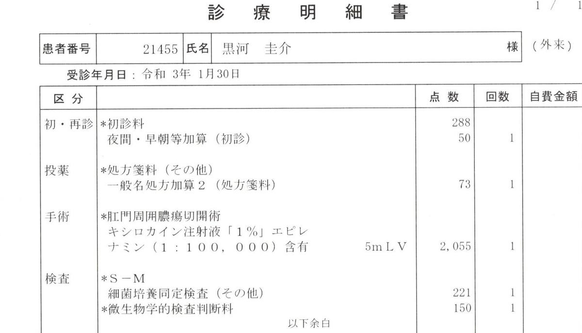 f:id:hanachan777:20210130213756j:plain