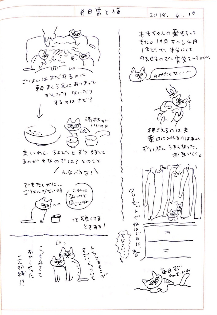 f:id:hanaco-mori:20180421224051j:image