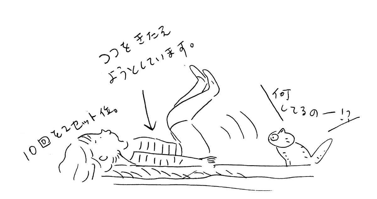 f:id:hanaco-mori:20200713210030j:plain
