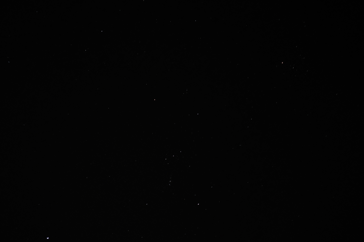 f:id:hanaco-mori:20201217170737j:plain