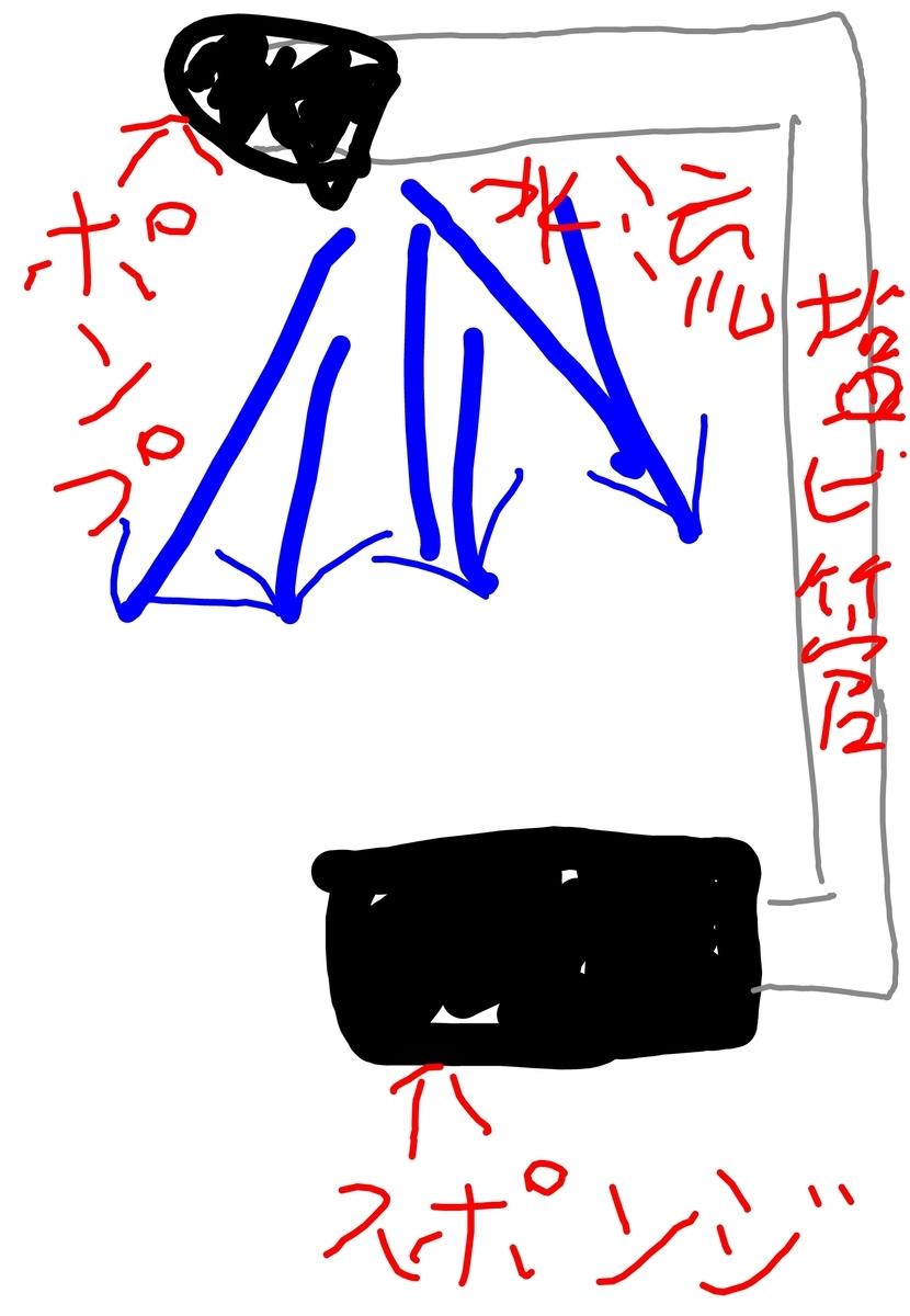 f:id:hanaebi:20190731030510j:plain