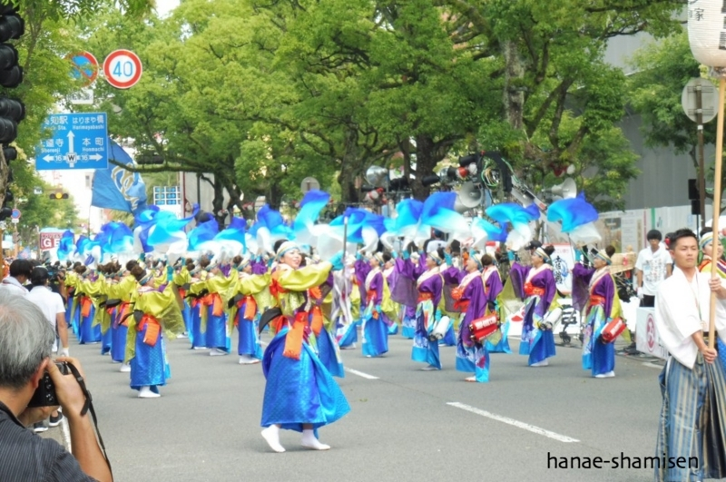 f:id:hanaekiryuin:20170812003455j:plain