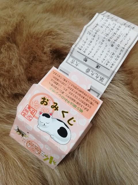 眠り猫のおみくじ,日光東照宮,徳川家康