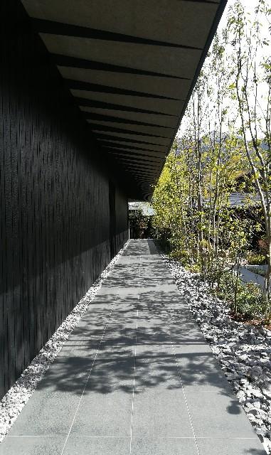 隈研吾,美術館,由布院,焼杉