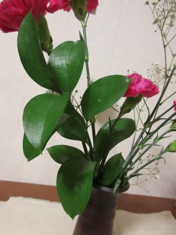 花びんにいけたルスカス