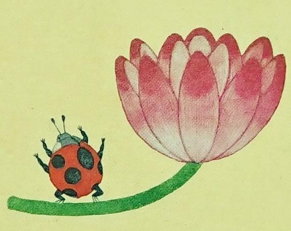マルマくんかえるになる てんとうむしとはすの花