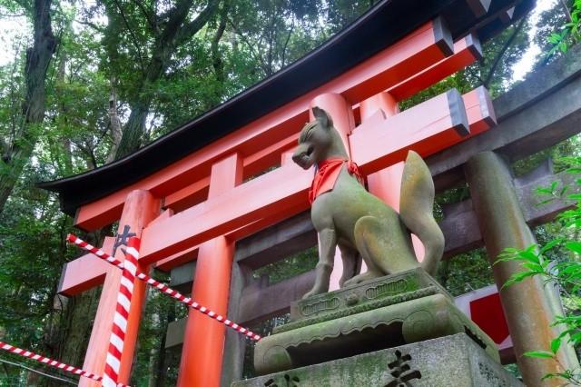 怪談イメージ神社の狐