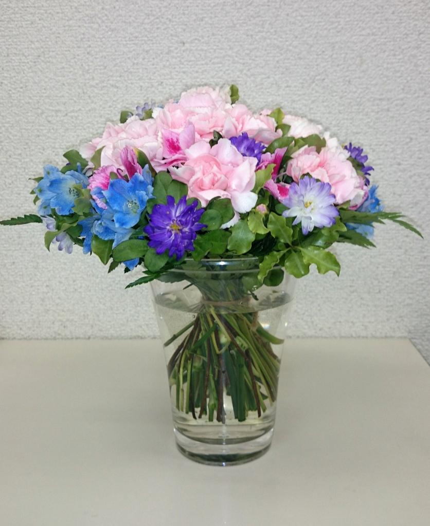 f:id:hanaizumokun:20170413234927j:plain