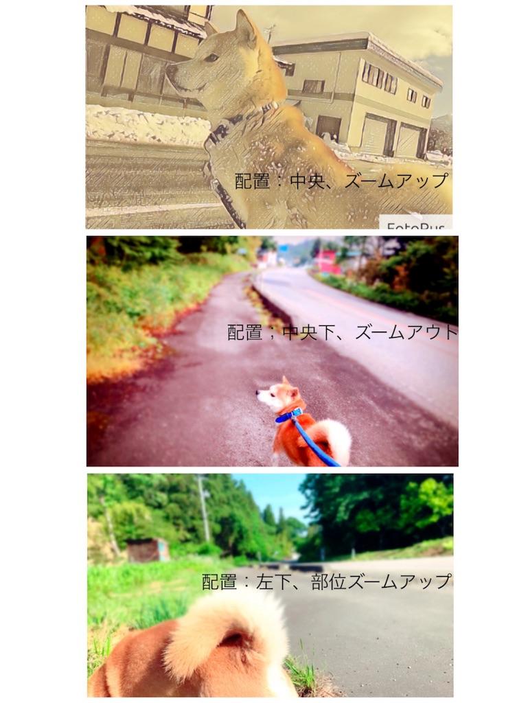 f:id:hanak50kamoto:20180605075339j:image