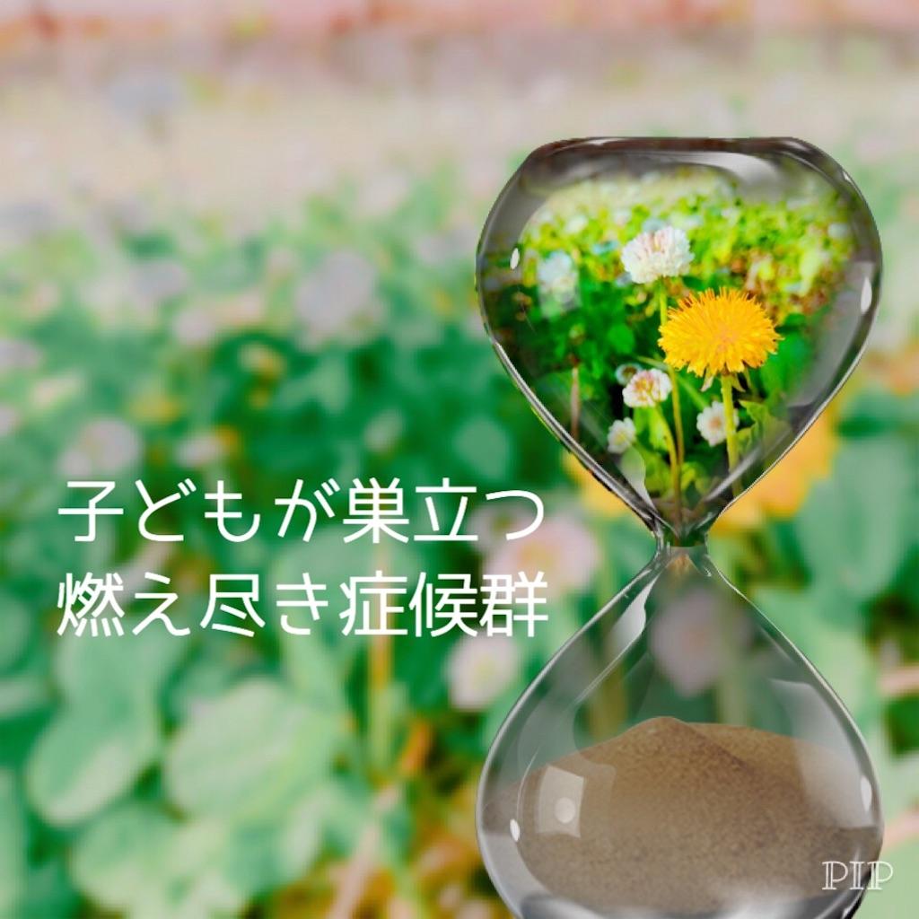 f:id:hanak50kamoto:20180713102042j:plain