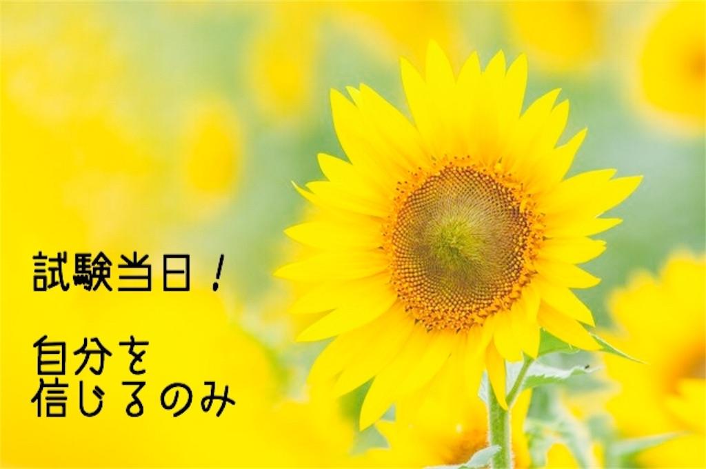 f:id:hanak50kamoto:20180828234902j:image