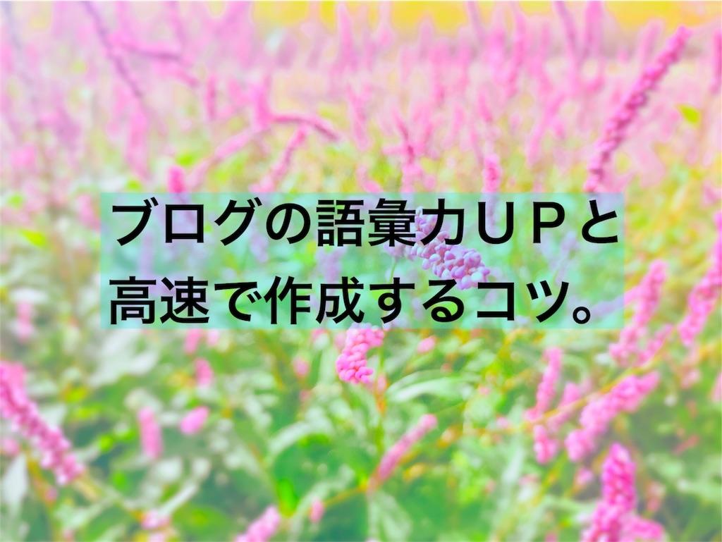 f:id:hanak50kamoto:20181006144421j:image