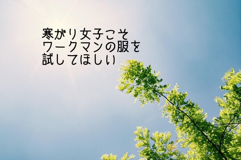 f:id:hanak50kamoto:20181115103929j:image