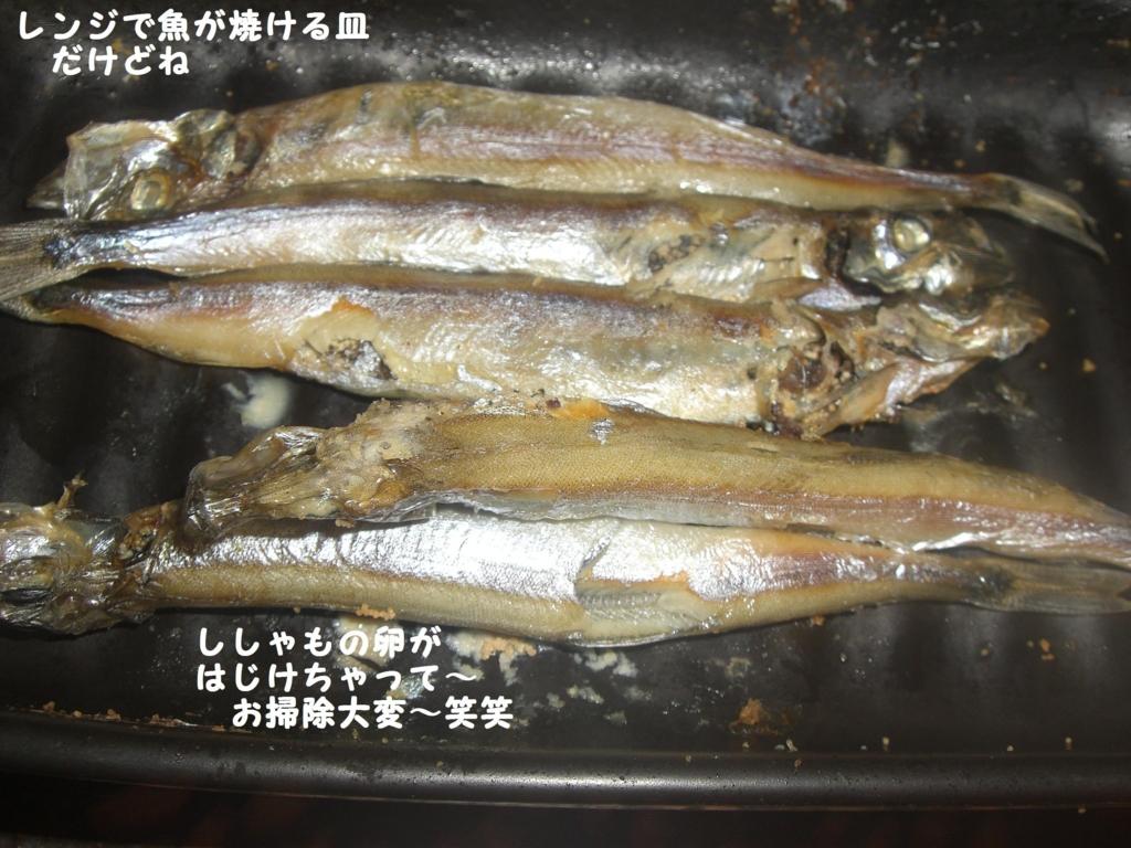 f:id:hanakabu:20160805094843j:plain
