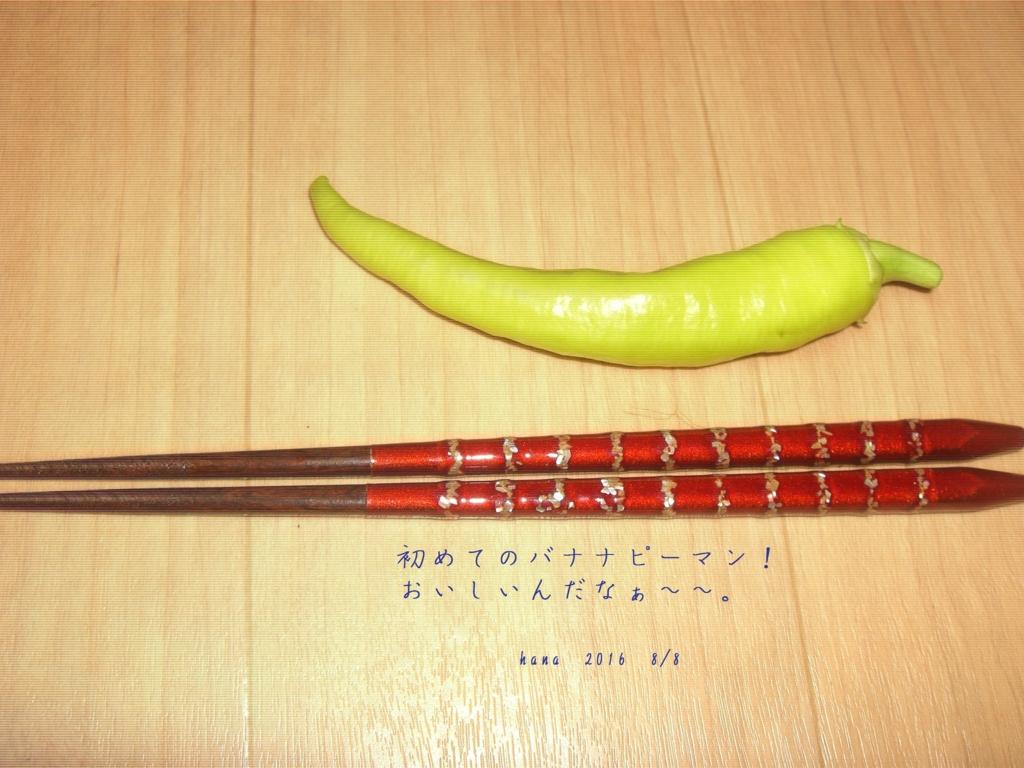 f:id:hanakabu:20160809092627j:plain