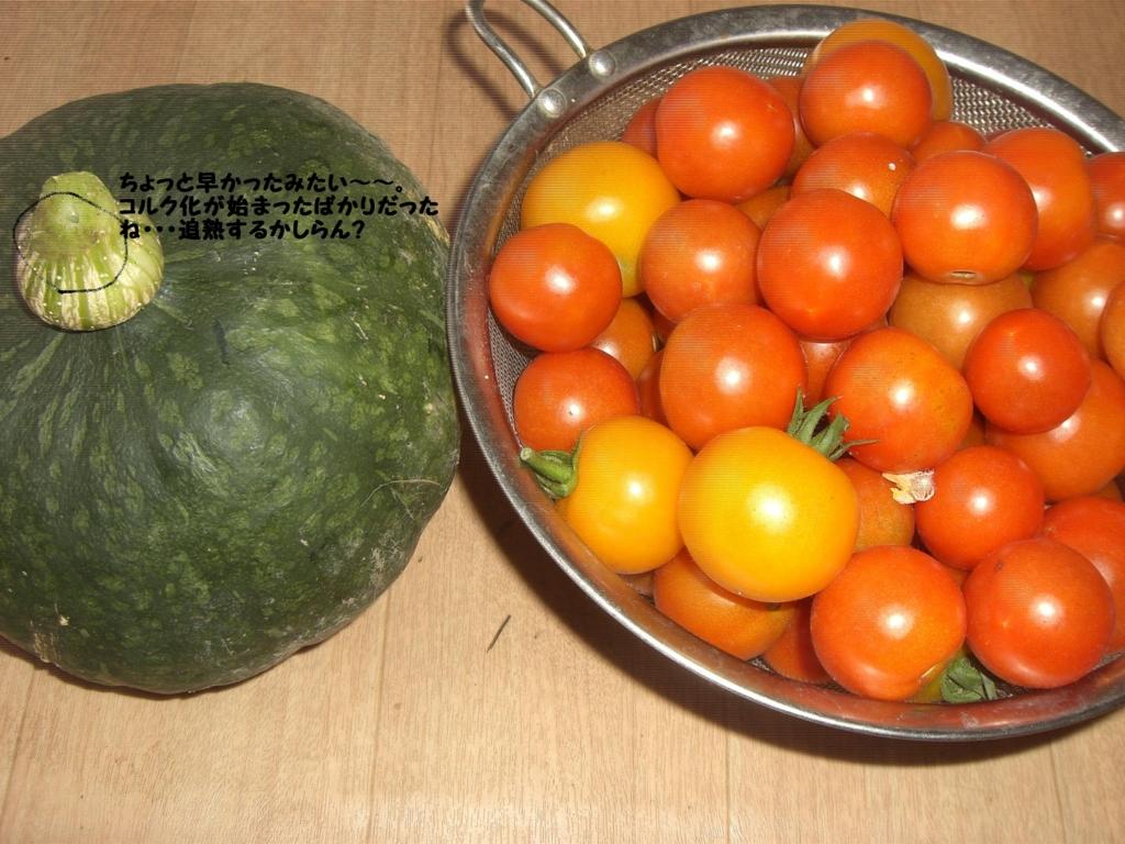 f:id:hanakabu:20160813094802j:plain