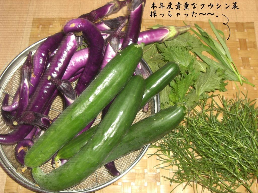 f:id:hanakabu:20160819082552j:plain