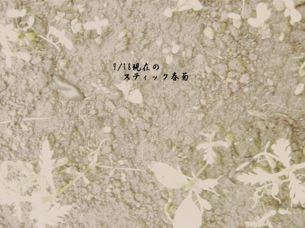 f:id:hanakabu:20160918201358j:plain