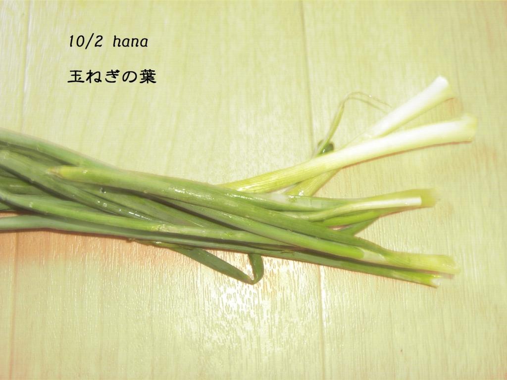 f:id:hanakabu:20161002141049j:plain