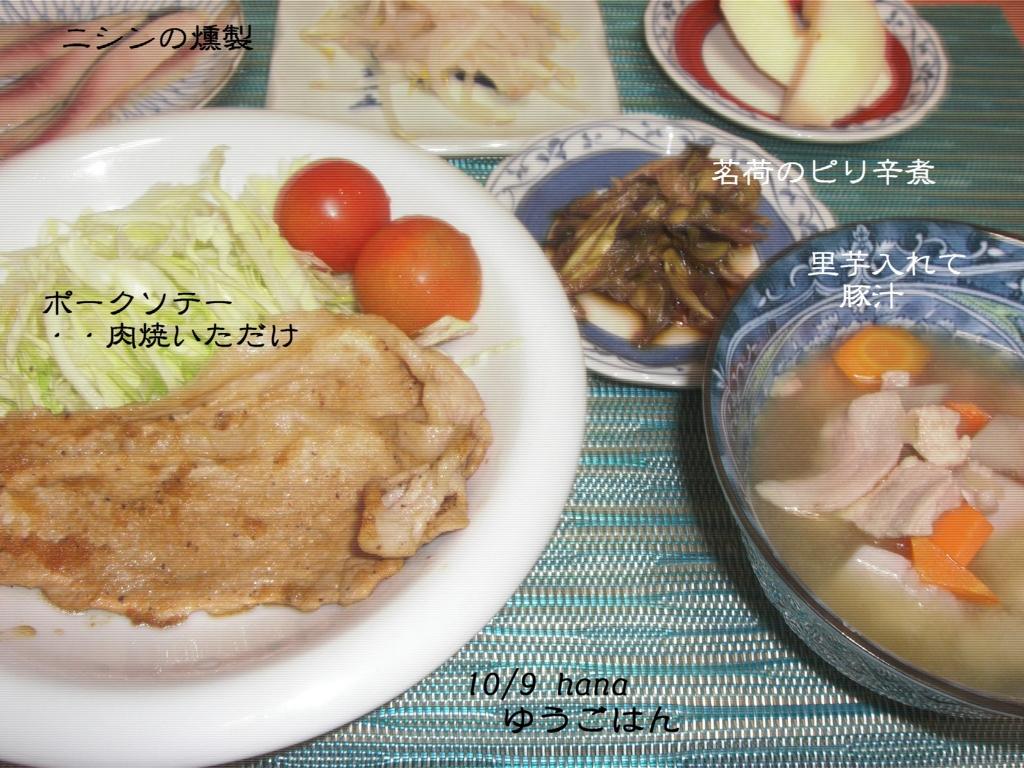 f:id:hanakabu:20161008211814j:plain