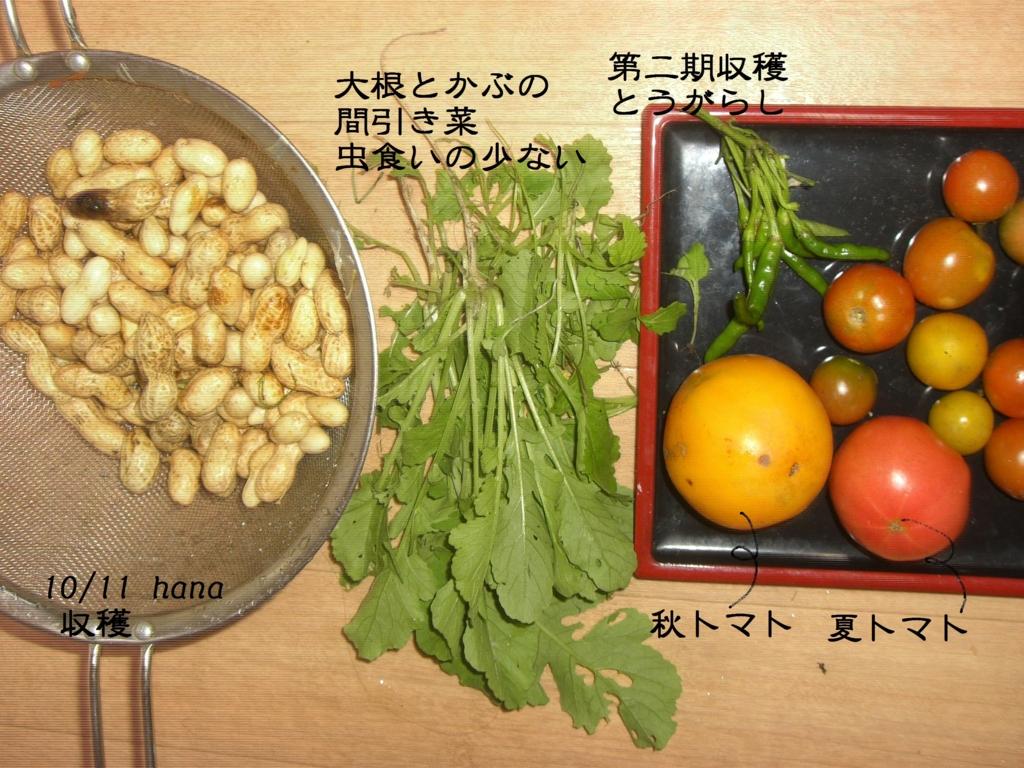 f:id:hanakabu:20161011235831j:plain