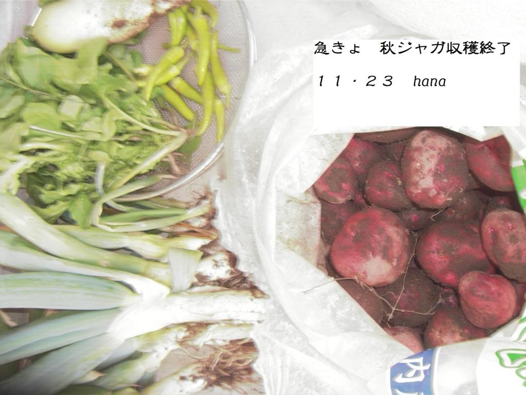 f:id:hanakabu:20161123235851j:plain