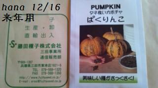 f:id:hanakabu:20161216173656j:plain