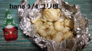 f:id:hanakabu:20170104205132j:plain