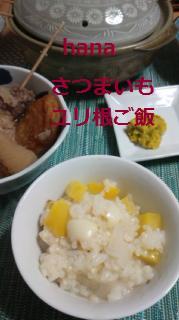 f:id:hanakabu:20170108234057j:plain