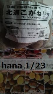 f:id:hanakabu:20170123205720j:plain