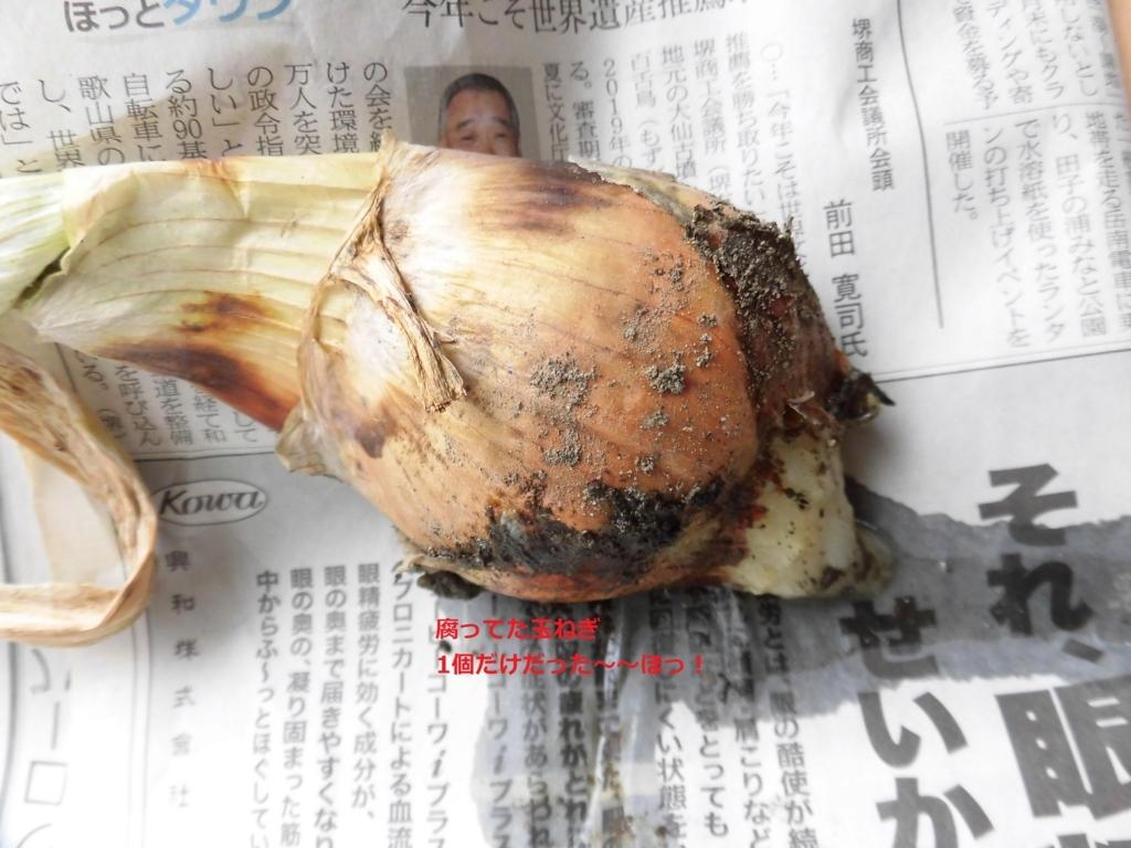 f:id:hanakabu:20170607165148j:plain