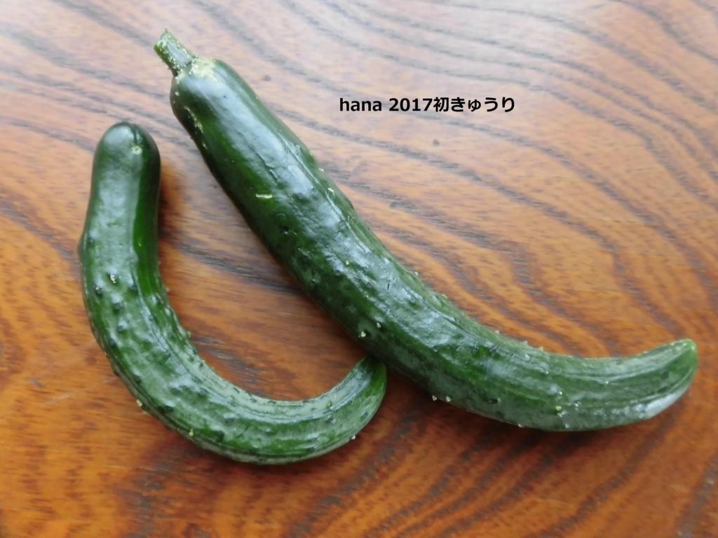 f:id:hanakabu:20170611120926j:plain