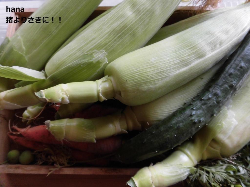 f:id:hanakabu:20170620164607j:plain